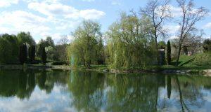Отдых в живописном Хмельнике у воды с деревьями