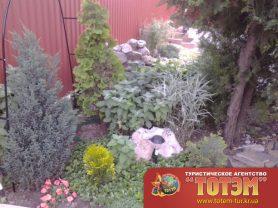 Озеленение и гурий в санатории Амур